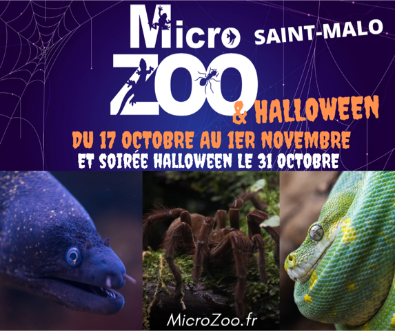 Microzoo