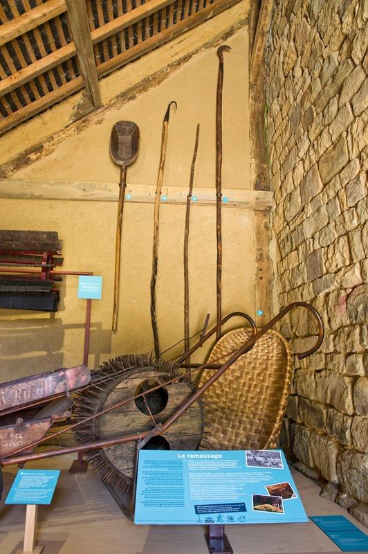 Barenton-Musee-du-Poire-9-Francis-Massias