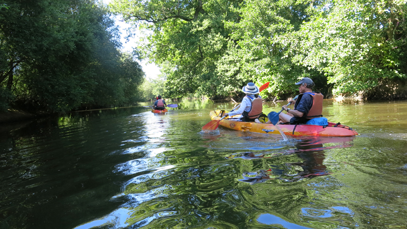 Canoe-kayak-sur-la-Selune
