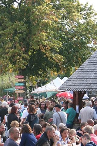 Cara-Meuh-Festival