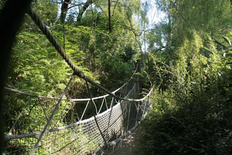 Champrepus-Parc-zoologique-et-paysager2-Y.Lebreton