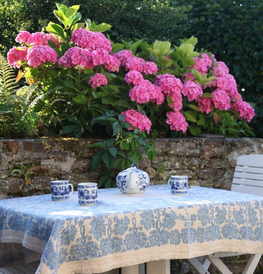 Dragey-Ronthon-Lamotte-d-argy-les-hortensias-2