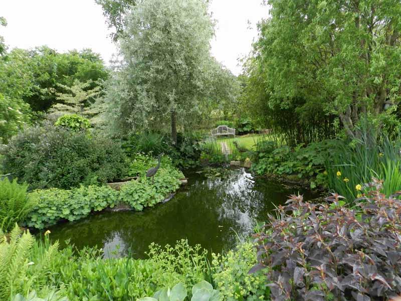 Le-Jardin-du-Cassel-a-Isigny-le-Buat-4-TIS