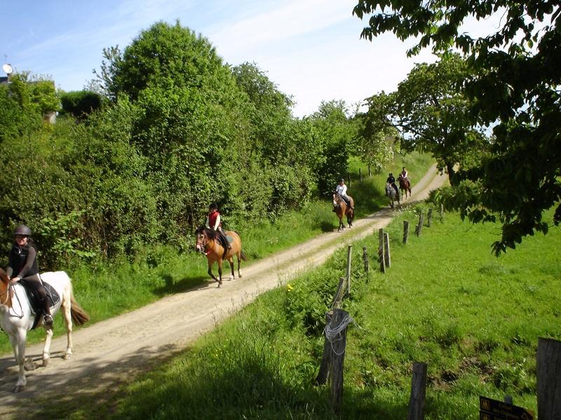 St-Hilaire-du-harcouet-centre-equestre-du-manoir–1-