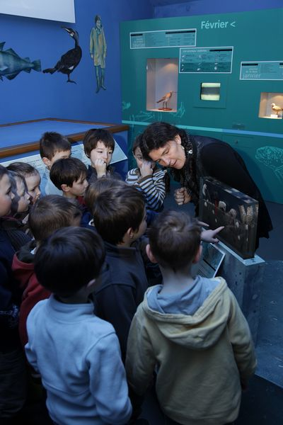 Visite-Ecomusee–D.Daguier-CD50-138–800×600-