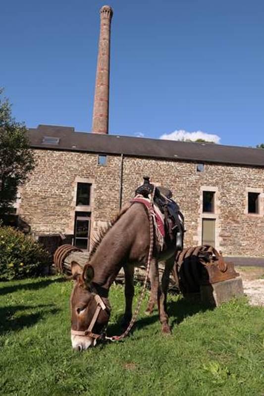brouains-ecomusee-du-moulin-de-la-see–1-