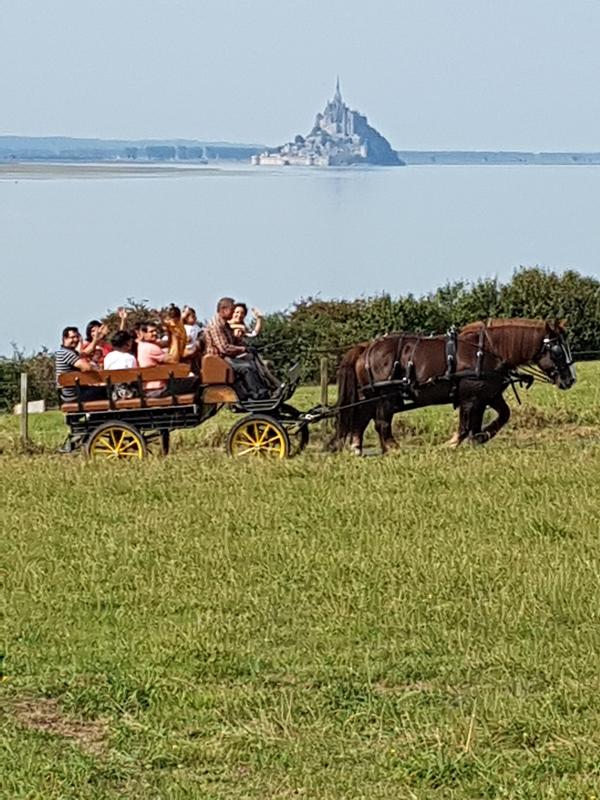 champeaux-ferme-equestre-des-courlis-10