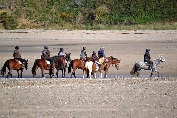 saint-senier-sous-avranche-centre-equestre-le-grand-gougerey