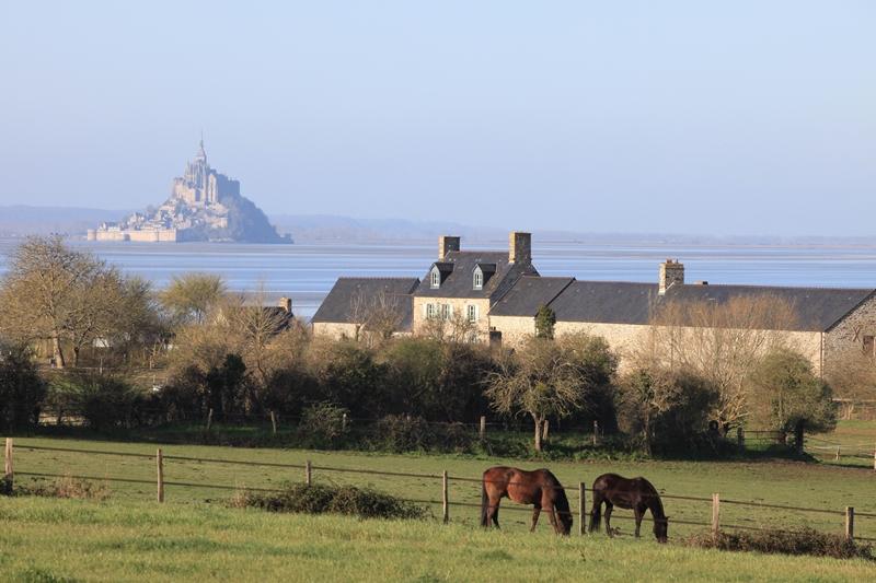 vains-ecomusee-de-la-baie-du-msm-1-D.Daguier-CG50-01